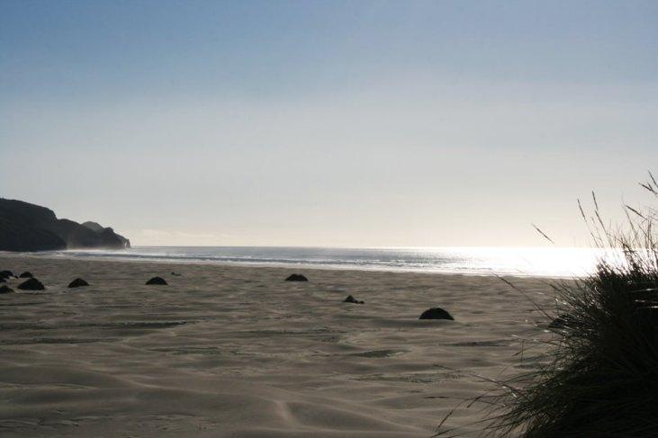 newzelande photo 4