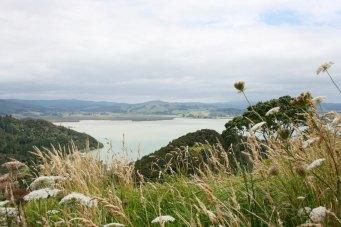 Newzelande photo1